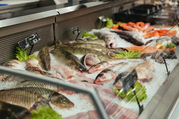 Schaukasten mit rohem fisch