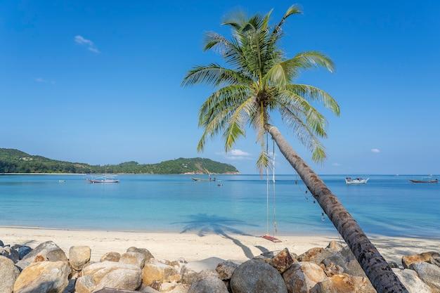 Schaukel hängen von kokospalme über sandstrand nahe blauem meerwasser, thailand