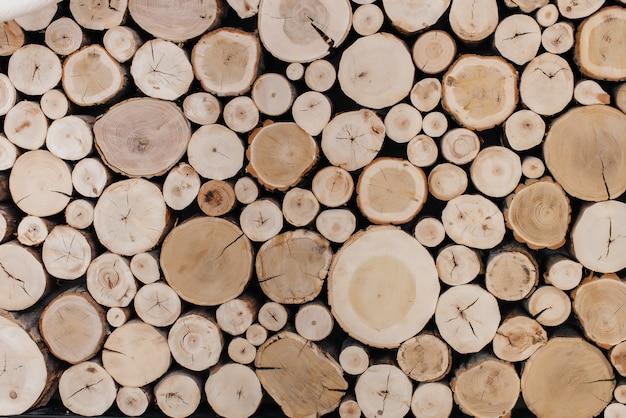 Scheiben von bäumen, für hintergrund oder textur.