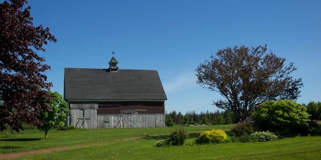Scheune auf feld, albany, prinz edward island, kanada