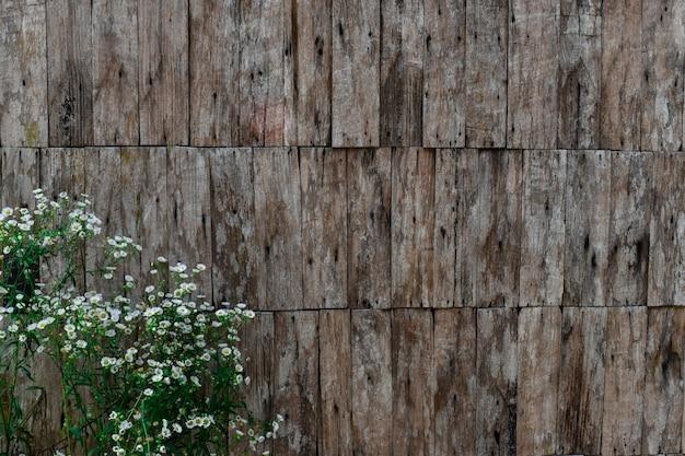 Schichten der hölzernen wand und der weißen blume der alten planke. für hintergrund oder hintergrund