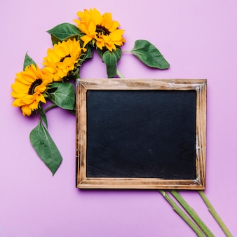 Schiefer auf sonnenblumen