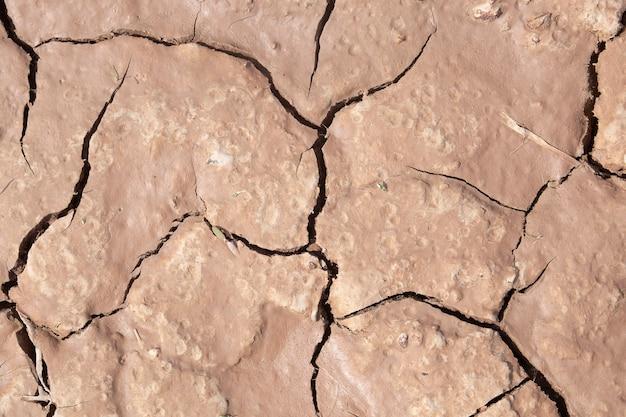 Schlammsprung, brown knackte grundbeschaffenheit oder hintergrund
