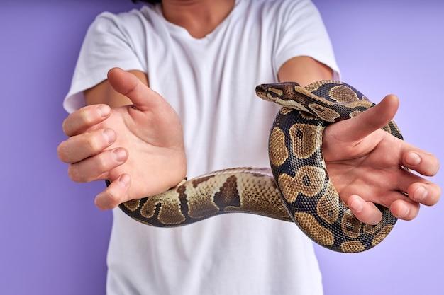 Schlange band die hände des mannes nahaufnahme. der typ weint vor angst und überlegt, wie er sich aus den fesseln der schlange befreien kann