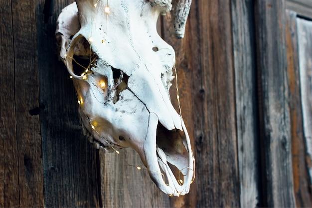 Schlechter eleganter schädel eines hirsches mit einer girlande für halloween auf hölzernem hintergrund.