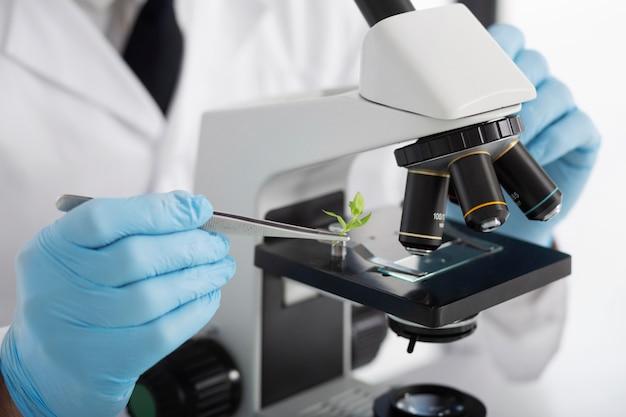 Schließen sie die hände, die mit dem mikroskop arbeiten
