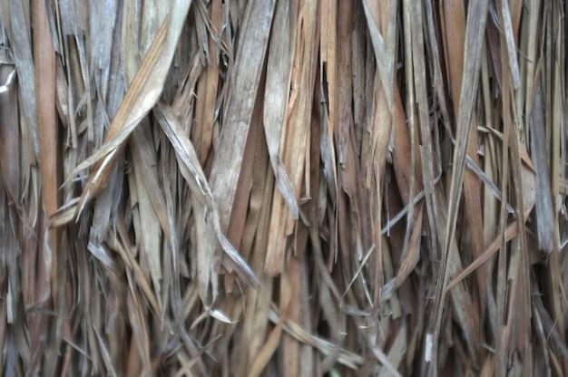 Schließen sie herauf ansicht, trockenes strohdachdach von traditionellem