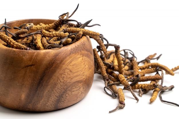 Schließen sie herauf cordycep sinensis (chong cao) oder pilz cordyceps auf hölzerner schüssel