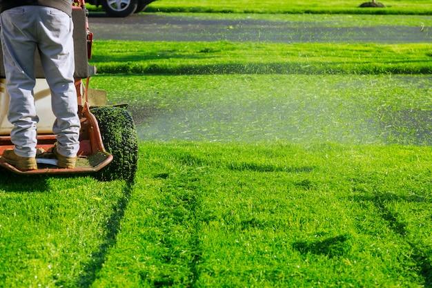 Schließen sie herauf des mannes, der einen rasenmäher einen gärtner verwendet, der gras durch rasenmäher schneidet