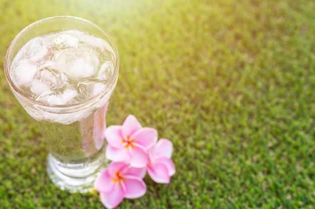 Schließen sie herauf glas kaltes wasser mit eis auf grünem gras mit unschärfennatur-gartenhintergrund