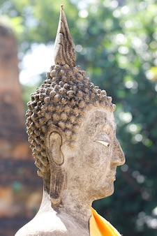 Schließen sie herauf hauptbuddha-status in thailand