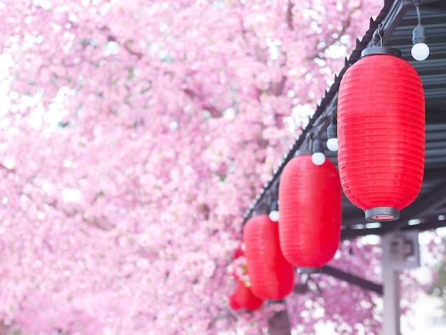 Schließen sie herauf rote papierlaterne, die unter dem dach im garten mit rosa sakura blumenhintergrund hängt. chinesische neujahrsdekoration im park.