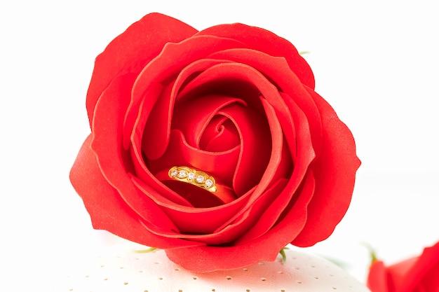 Schließen sie herauf rote rosen und goldringe auf weiß
