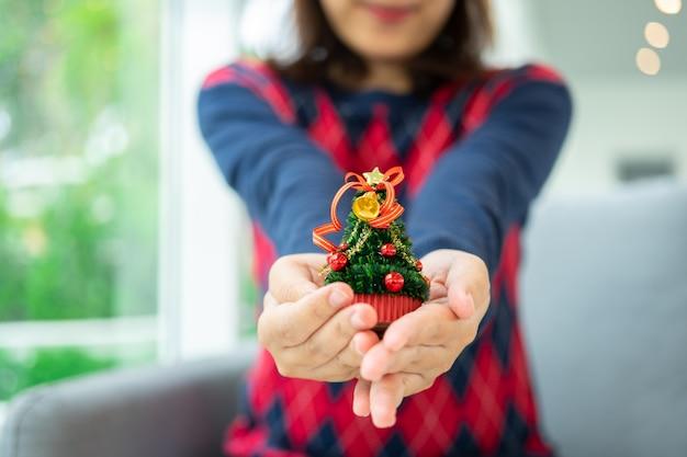 Schließen sie herauf schuss von den weiblichen händen, die einen kleinen weihnachtsbaum halten feiern sie weihnachten