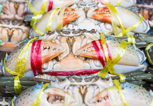 Schließen sie herauf schwarze krabbe oder gezackten mangrovenkrabbe