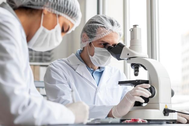 Schließen sie herauf wissenschaftler, der mit mikroskop arbeitet