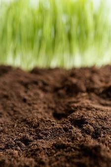 Schließen sie natürlichen boden und gras
