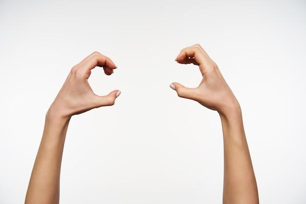 Schließen sie oben auf den händen der jungen hübschen frau, die angehoben werden, während sie mit den fingern runde form bilden
