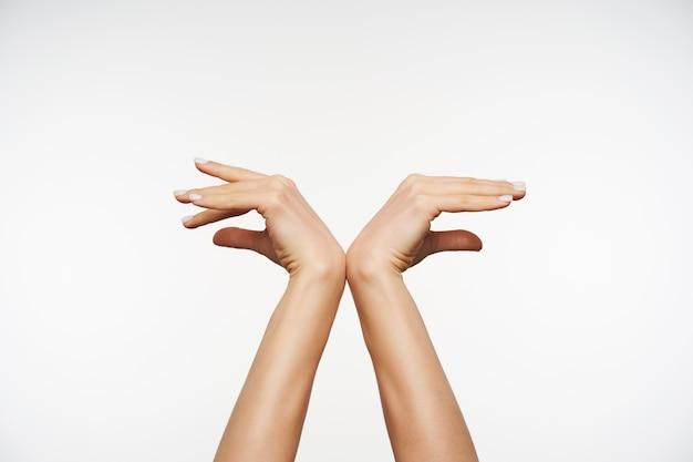 Schließen sie oben auf elegante erhobene hände, die sich aneinander lehnen, während sie vogelflügelgesten bilden