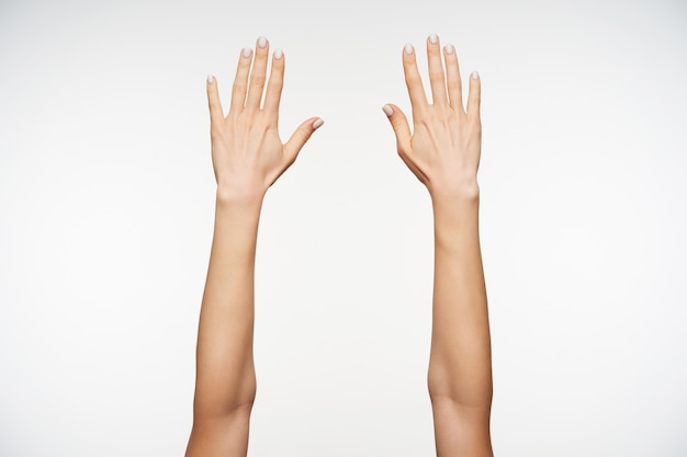 Schließen sie oben auf schönen händen der jungen frau mit maniküre