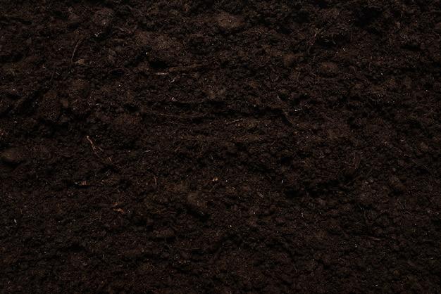 Schließen sie oben auf schwarzem land für pflanzenhintergrund