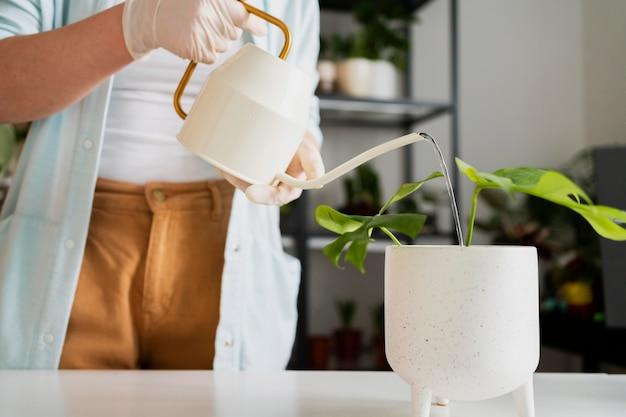 Schließen sie oben den bewässerungspflanzentopf der frau