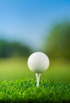 Schließen sie oben den golfball auf den t-stücken, die bereit sind, im grünen hintergrund zu spielen