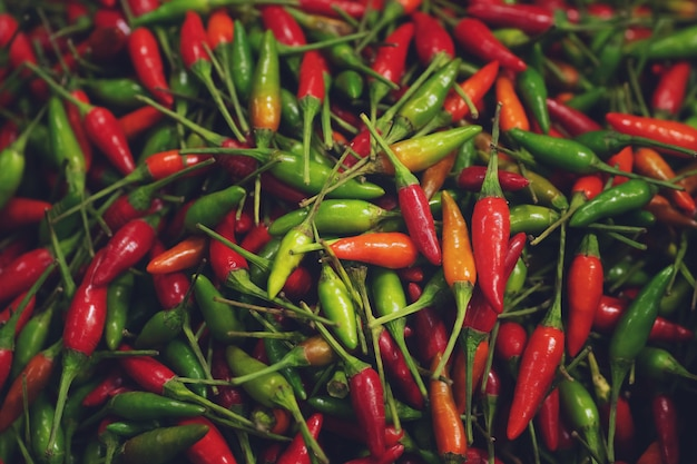 Schließen sie oben haufen frischer scharfer chilischoten, thailändischer straßenlebensmittelmarkt