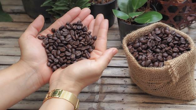 Schließen sie oben kaffeebohnen auf der hand des mädchens