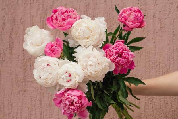 Schließen sie oben vom abstrakten mit blumenhintergrund der weißen und rosa pfingstrosenknospen