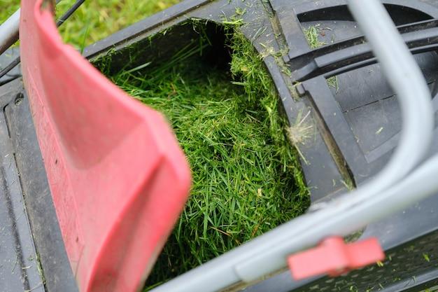 Schließen sie oben vom frisch gemähten gras in einem rasenmäher
