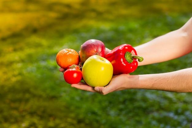 Schließen sie oben von den händen eines landwirts, die obst und gemüse auf dem hintergrund von unscharfen grüns halten