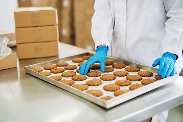 Schließen sie oben von der arbeiterin, die kekse auf teller in lebensmittelfabrik setzt.