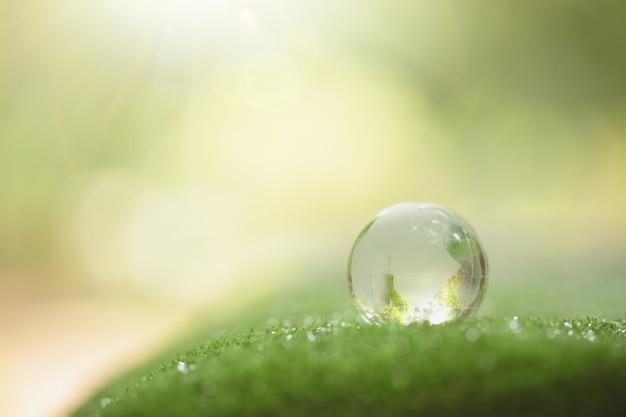 Schließen sie oben von der kristallkugel, die auf gras in einem wald stillsteht