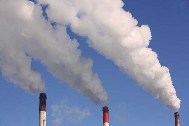 Schließen sie oben von pflanzenrohr mit rauch gegen blauen himmel