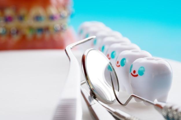Schließen sie oben. zahnarztwerkzeuge und lächelnzahnmodell
