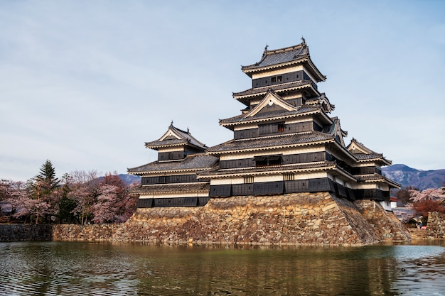 Schloss matsumoto mit sakura im frühjahr