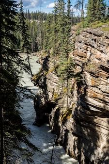 Schlucht nach dem wasserfall. athabasca fällt in einen tiefen canyon im norden kanadas. jasper, kanada, athabasca falls, acefield pkwy, wandern