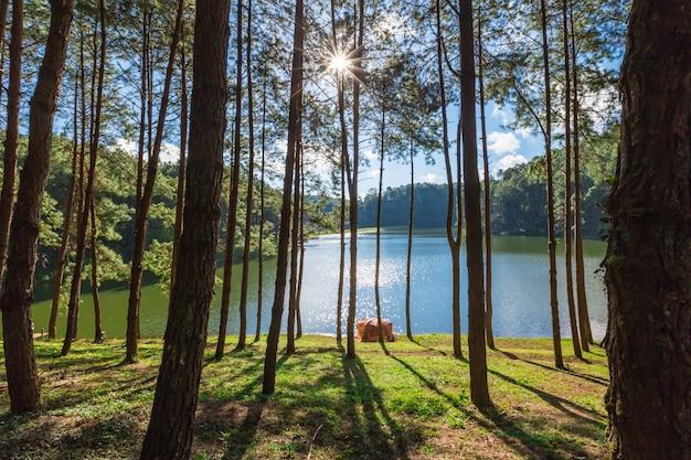 Schmerz oung reservoir im verbotsrak thailändisch bei maehongson, thailand