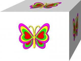 Schmetterling in 3b box