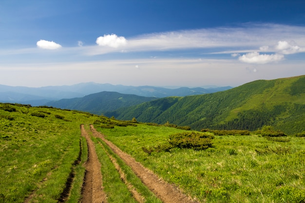 Schmutzautobahn auf dem grünen grasartigen hügel, der zu waldige gebirgskante auf hellem blauem himmel führt