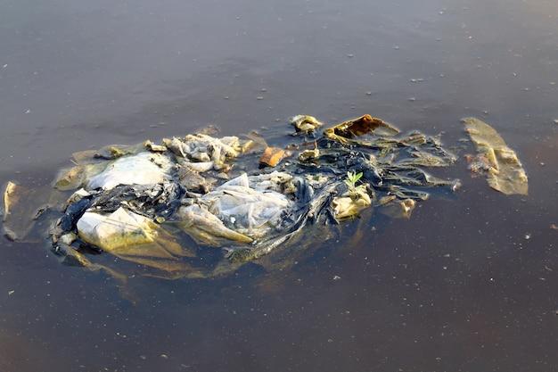 Schmutzige plastiktüten auf dem oberflächenwasser, plastiktüten zersetzen nicht den müll und verschmutzen das ökologische wasser der natur schmutzig, abwasser