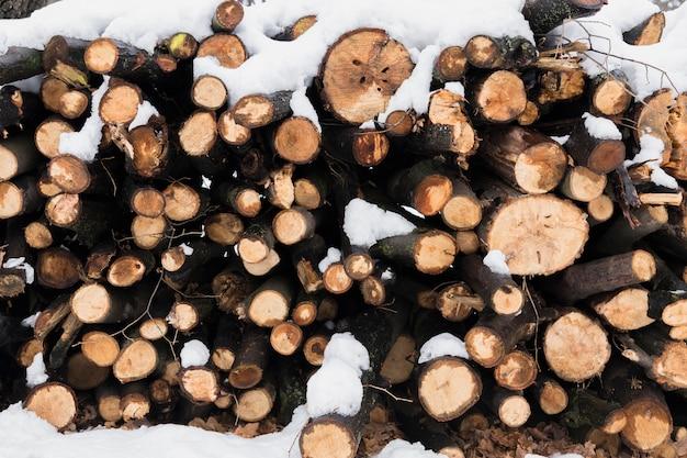 Schnee auf brennholz im winter