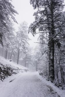 Schnee auf der straße im berg in der wintersaison, bilbao, spanien