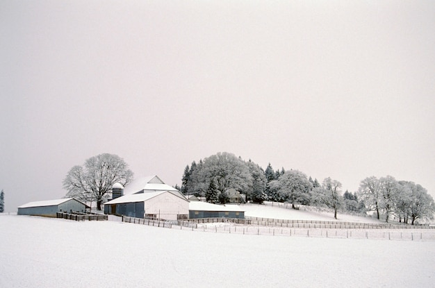 Schnee bedeckte bauernhof, gaston, oregon