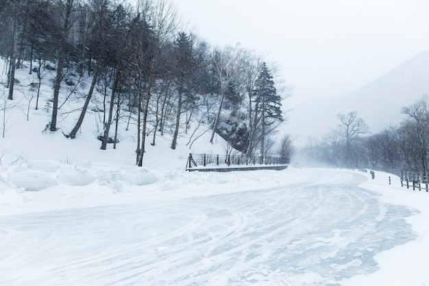 Schnee, der auf die straße in daisetsuzan national park, hokkaido, japan herunterkommt