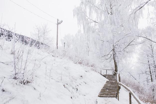 Schnee fällt im winter. rutschige treppe im schnee im freien. magische landschaft mit weißen bäumen. schneewetter im winter. winter natur hintergrund. rutschige straße im eis. alte treppe