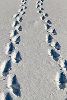 Schnee mit beschädigung