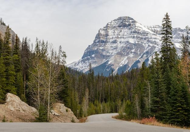 Schnee mit einer kappe bedeckter rocky mountain in nationalpark yoho, britisch-columbia, kanada