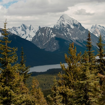 Schneebedeckte berge, bald hills, jasper national park, alberta, kanada